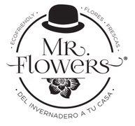 Mr. flowers logo 520x180