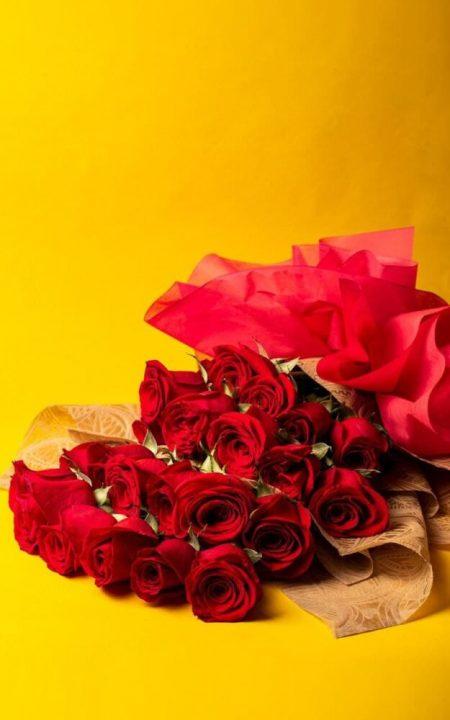 Enamorado Ando   Ramo con 24 Rosas Rojas
