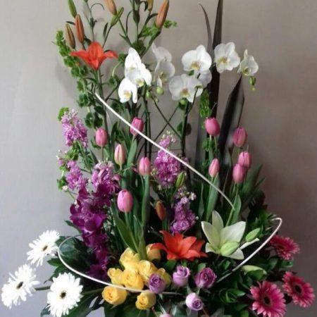 Arreglo Primaveral Pastel con Orquídeas