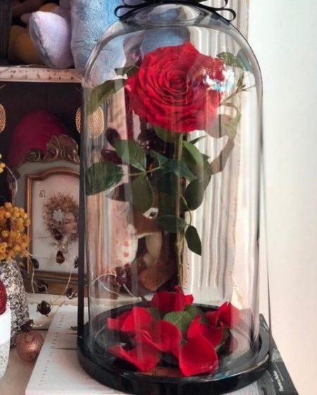 Rosa Encantada de la Bella y la Bestia 2
