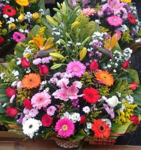 Florerías Mercado De Jamaica